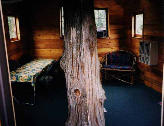 http://www.cedarcreektreehouse.com/images/TH_lr.jpg
