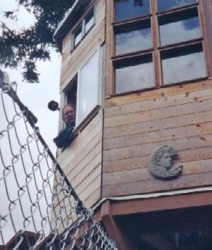 Treehouse owner and builder Bill Compher peers down from a window in the Observatory while dreaming up new schemes. Stay tuned ..