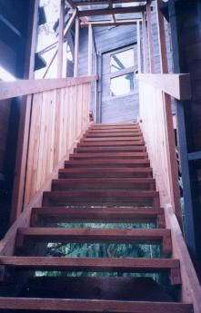 View of the top of the stairway, leading from the stairwell observation room to the treehouse door